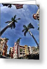 Naples Florida Vii Greeting Card