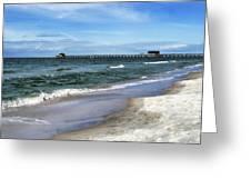 Naples Florida Xiv Greeting Card