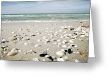 Naples Florida Xv Greeting Card