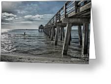 Naples Pier And Beach Fun Greeting Card