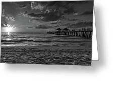 Naples Pier Bw  Greeting Card