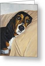 Naptime - Bassett Greeting Card