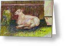 Naptime On The Farm Greeting Card