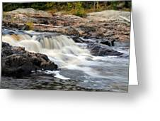 Naraguagus River Greeting Card by Steven Scott
