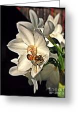 Narcissus And The Bee 3 Greeting Card