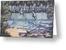 Narrabeen Lakes 2 Greeting Card