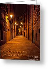 Narrow Alley  Greeting Card