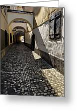 Narrow Cobblestone Alley Ribji Trg Or Fish Square From Cankar Qu Greeting Card