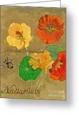 Nasturtiums With Bumble Bee Greeting Card