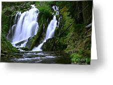 National Creek Falls 02 Greeting Card