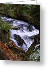 National Creek Falls 03 Greeting Card