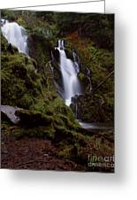 National Creek Falls 04 Greeting Card