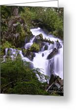 National Creek Falls 05 Greeting Card