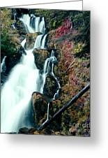 National Creek Falls 07 Greeting Card