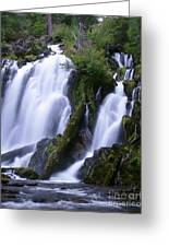 National Creek Falls 09 Greeting Card