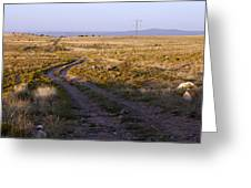 National Old Trails South Of Santa Fe Greeting Card