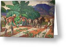 National Park Service - Tropical Country Greeting Card