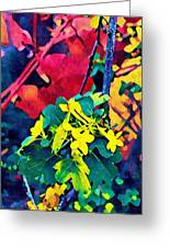 Native Plants Become Art.  Greeting Card