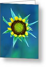 Natural Art Greeting Card