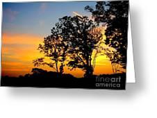Natural Art Greeting Card