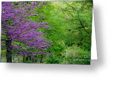 Natural Background Greeting Card