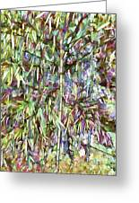 Natural Bamboo Trees Greeting Card