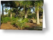 Natural Beauty Of Florida Greeting Card