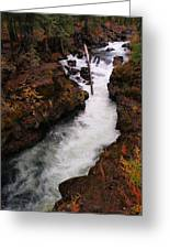 Natural Bridge Gorge Greeting Card