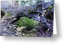 Natural Bridge Two   Greeting Card