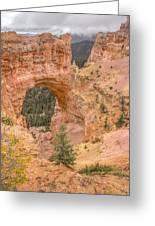 Natural Bridge - Vertical Greeting Card