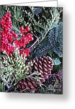 Natural Christmas 3 Greeting Card