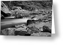 Natural Contrast Black And White Greeting Card