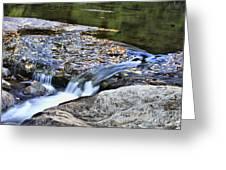 Natural Flow Greeting Card