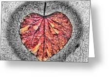 Natural Heart Greeting Card