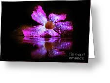 Natural Mirror  Greeting Card