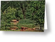 Natural Paradise Greeting Card