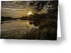 Natural Spotlight Greeting Card
