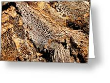 Natural Textural Abstract Greeting Card