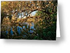 Naturally Florida Greeting Card