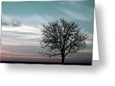 Nature - Early Sunrise Greeting Card
