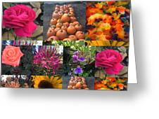 Nature Color Greeting Card