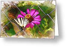 Butterfly In Love Greeting Card