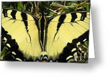 Nature In The Wild - A Natural Painting Greeting Card
