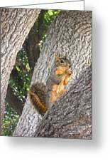 Nature In The Wild - Keeping Watch Greeting Card