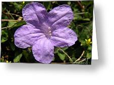 Nature In The Wild - Purple Paper Greeting Card