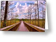 Nature Path Greeting Card