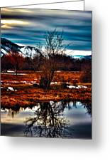 Nature Reflects Greeting Card