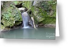 Nature Spring Scene Creek Greeting Card