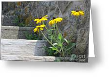 Nature Steps It Up Greeting Card