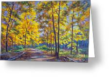 Nature Trail Turn Of Autumn Greeting Card by Fiona Craig